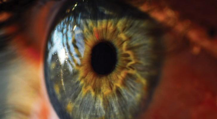 Het eerste kunstmatige netvlies op natuurbasis zal miljoenen mensen weer laten zien