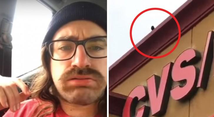 Deze man vervloekt de vogels die zijn auto vervuilen, maar aan het einde krijgt hij een passend antwoord!