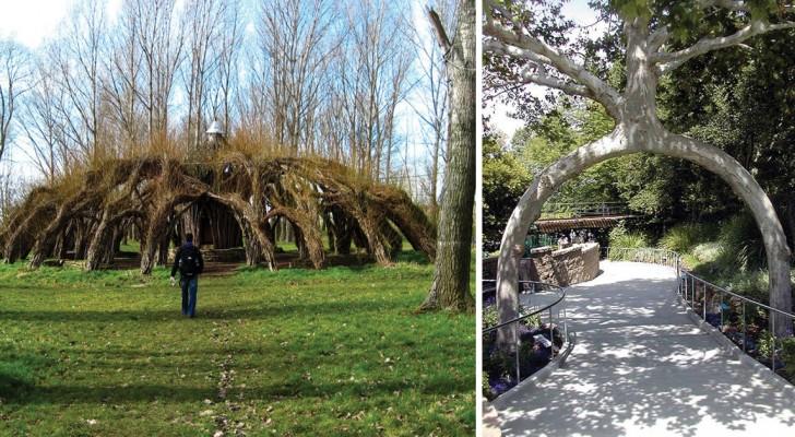 7 schitterende architectonische werken die zijn gemaakt van levende bomen