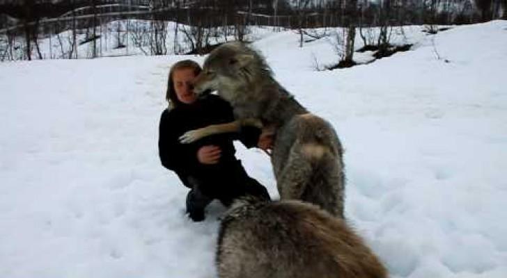 La rencontre entre Anita et les Loups