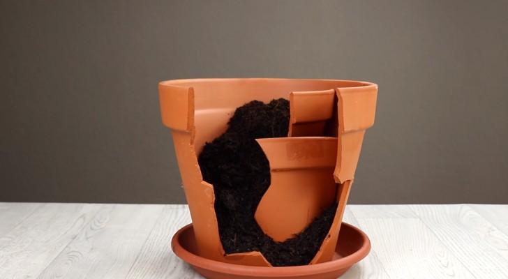 Anstatt einen zerbrochenen Topf wegzuwerfen, ordne die Stücke und fülle sie mit Erde auf: das Endergebnis ist brilliant