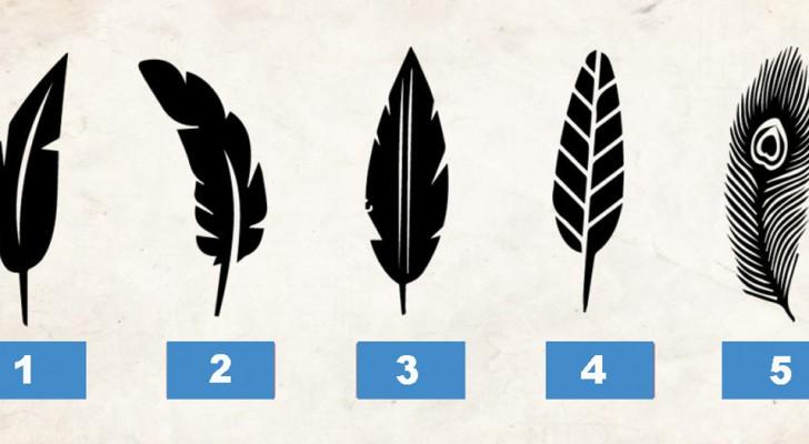 Welke veer heeft jouw voorkeur? Het antwoord zegt iets over je persoonlijkheid