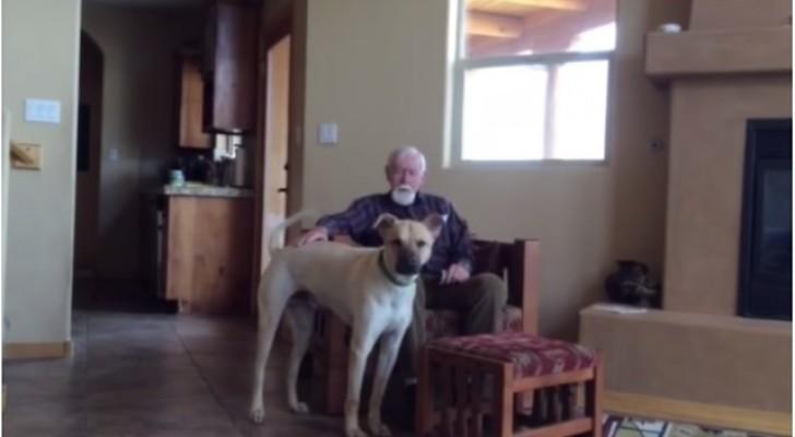 Il padre è affetto da Alzheimer e non parla più: ma ecco cosa accade quando rimane solo con il cane