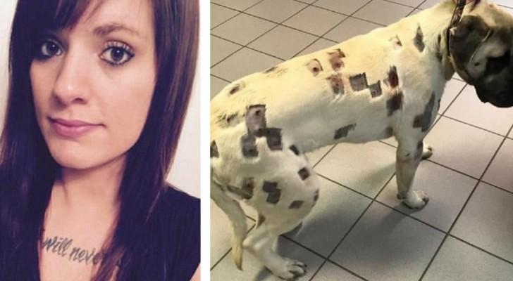 Credeva fossero punture da insetto ma il veterinario le ha detto di chiamare la polizia