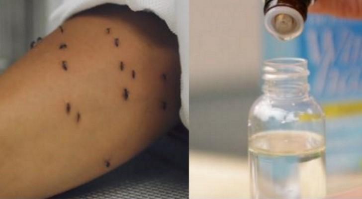 Les moustiques vous torturent? D'après la science ce remède naturel est plus efficace que les produits chimiques