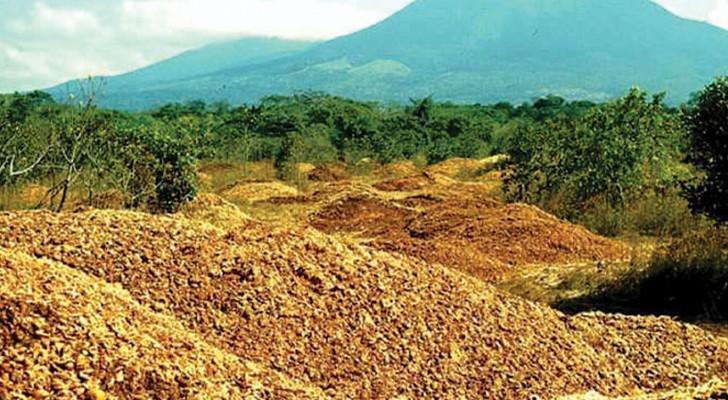 Een vruchtensapfabriek lost tonnen sinaasappelschillen op een terrein: 16 jaar later is het onherkenbaar