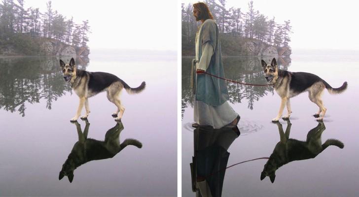 Vor und nach Photoshop: Diese Fotomontagen sind einfach zum totlachen