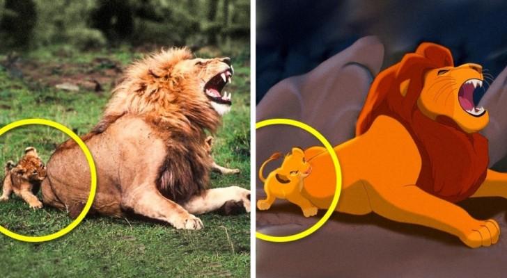 Questi 11 animali sono la copia ESATTA di alcuni famosissimi cartoni animati