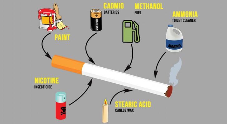 Questo è ciò che immetti nel tuo corpo ogni volta che accendi una sigaretta