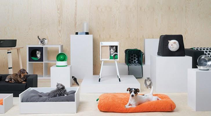IKEA ha appena lanciato una linea di mobili dedicata agli animali ed è già un incredibile successo
