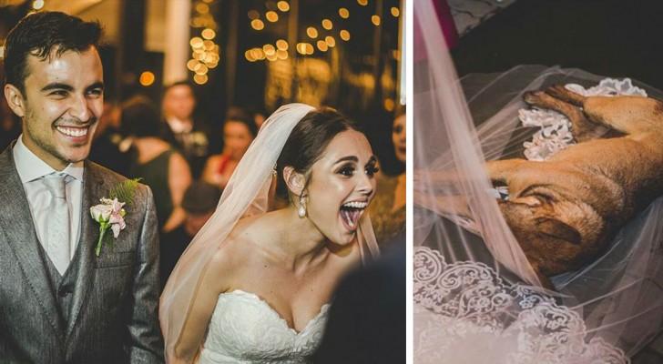 Een hond glipt naar binnen tijdens hun bruiloft, maar de reactie van het paar ontroert de wereld