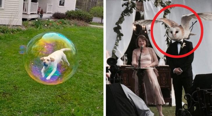 17 fotos que te mostraran que cosa esta en grado de crear una coincidencia