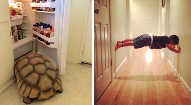 18 people who woke up to find themselves in hilarious situations!