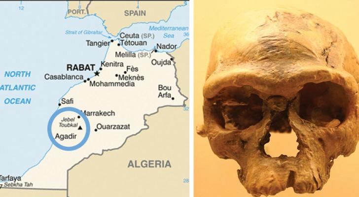 Le più antiche ossa di Homo Sapiens mai trovate riscrivono la storia dell'evoluzione umana