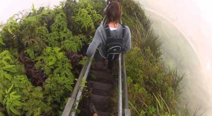 Stairway to Heaven, in Hawaii