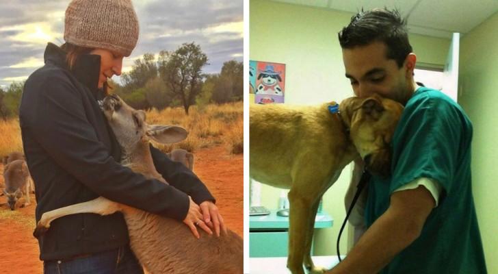 12 dankbare Tiere die sich bei ihren Gönnern erkenntlich zeigen