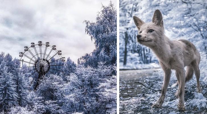 Chernobyl: le spettacolari foto a infrarossi a 31 anni dal disastro