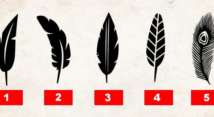 Vilken fjäder föredrar du? Svaret avslöjar någonting om din personlighet