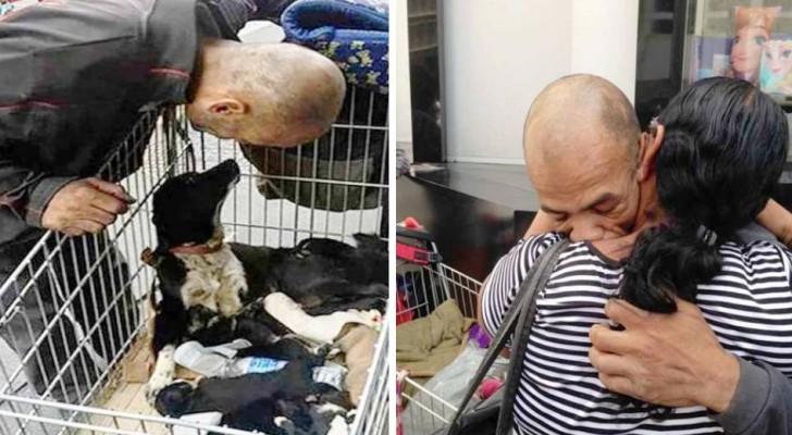Een man verkoopt het weinige dat hij nog heeft om zijn hond te redden: in ruil daarvoor vindt hij zijn familie