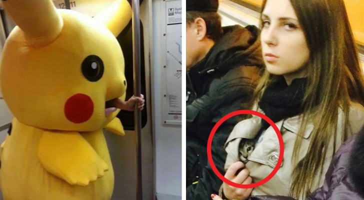 People and bizarre animals in the subway --- 17 incredible images from all over the world