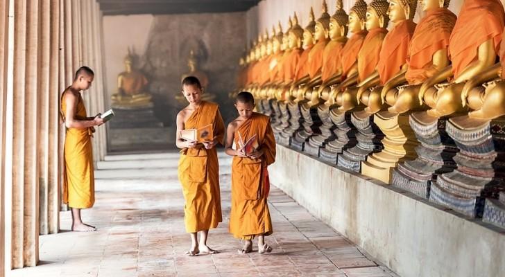 Die 4 Wachstumsphasen gemäß des tibetanische Glaubens und das was Eltern daraus lernen können