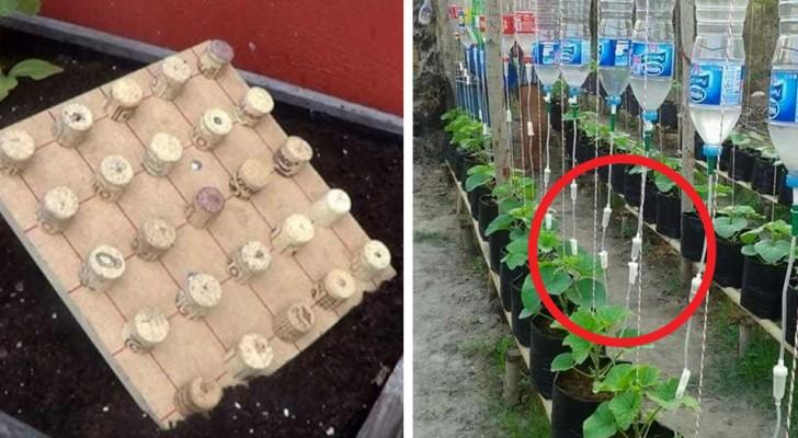 Passione per il giardinaggio? Questi trucchi faranno di te un esperto del verde e del fai da te!