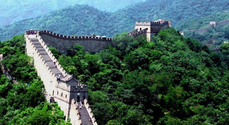 En 5 ans, la Chine a recouvert d'arbres une superficie plus grande que celle de l'Italie