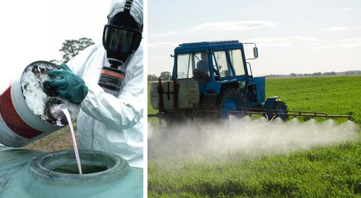 Pesticidi nelle acque italiane: i dati dello studio rivelano una realtà inquietante