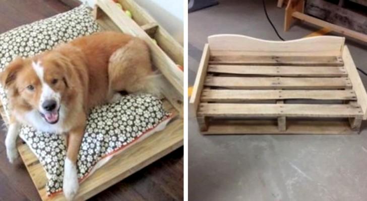 Ricavare Una Splendida Cuccia Per Cane Da Un Pallet Scopri Quanto è