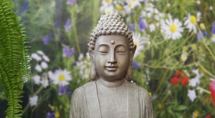 Les 12 lois du Karma que vous devez connaître pour vivre mieux et en harmonie avec votre prochain.