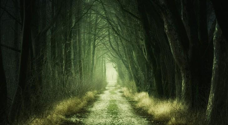 Petit test freudien : qu'est-ce qui est caché dans votre subconscient ?