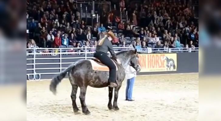 Hästens favoritlåt spelas och djurets reaktion leder till en spontan applåd från publiken