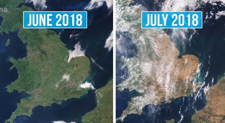 Ces photos satellites nous montrent des pays européens entiers transformés par la chaleur et la sécheresse.