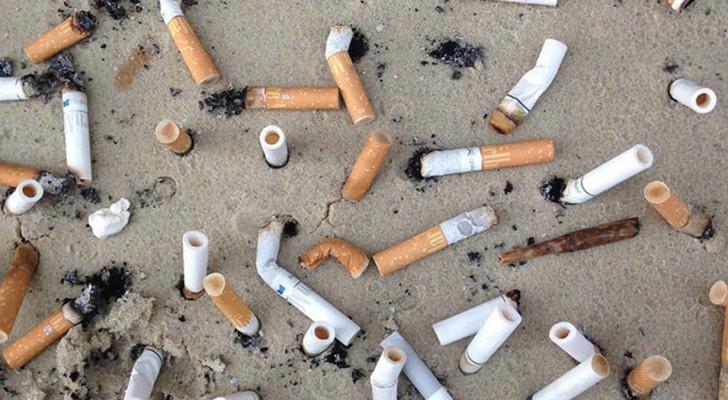 Vergeet plastic, want sigarettenpeuken staan op de eerste plaats van al het afval dat zich in zee bevindt