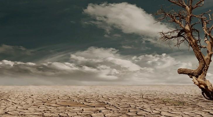 Ecco un veloce test per capire qualcosa su di te e sulle persone che ami. Immagina di stare in un deserto...