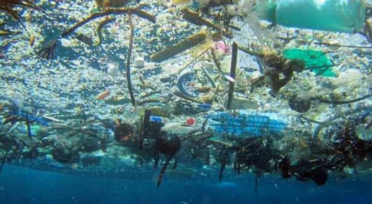 Plastic is deze planeet aan het verstikken, maar gelukkig zijn er 10 dingen die je NU METEEN kan vervangen