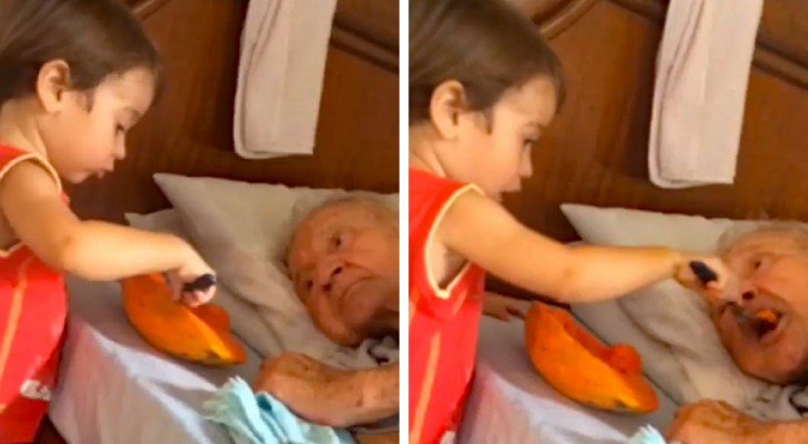This young child helps his elderly grandfather to eat ... and the video touches thousands of people!