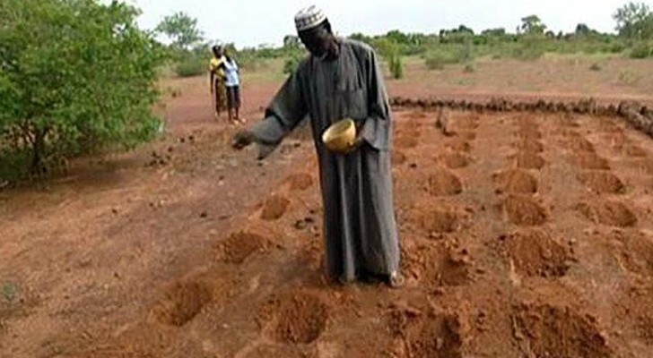 Dieser Mann hat es geschafft, die Wüste zu stoppen, indem er landwirtschaftliche Tradition mit Innovation verbindet.