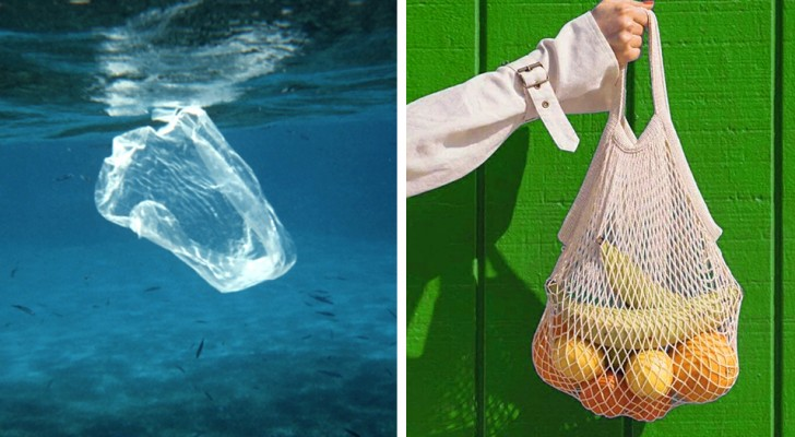 Was ist, wenn du anfängst, etwas für die Umwelt zu tun? Hier sind 9 Möglichkeiten, wie Sie es tun können