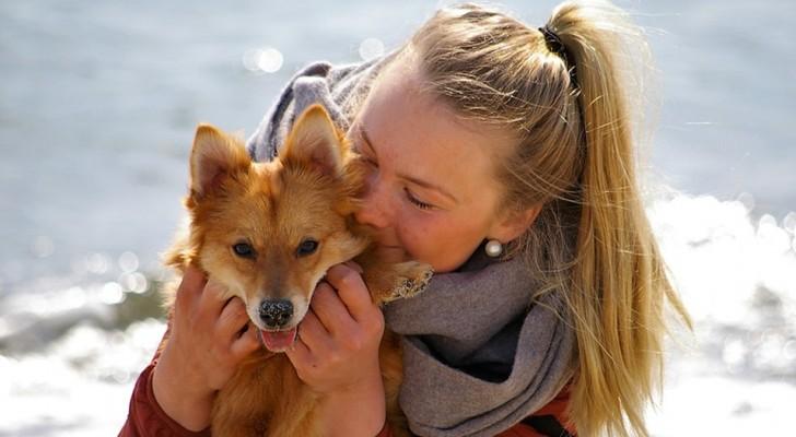 Människor tenderar att bry sig mer om hundar än om andra människor, detta avslöjar en studie som genomförts nyligen