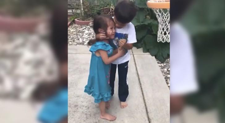 Den här pojken tröstar sin lillasyster på ett sätt som ingen förälder hade kunnat göra