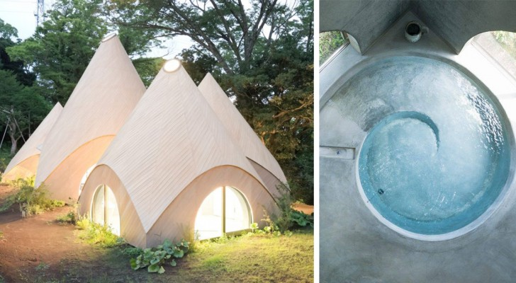 Zwei japanische Rentner lassen ein Haus im Wald bauen: Das Ergebnis erregt den Neid der ganzen Welt.