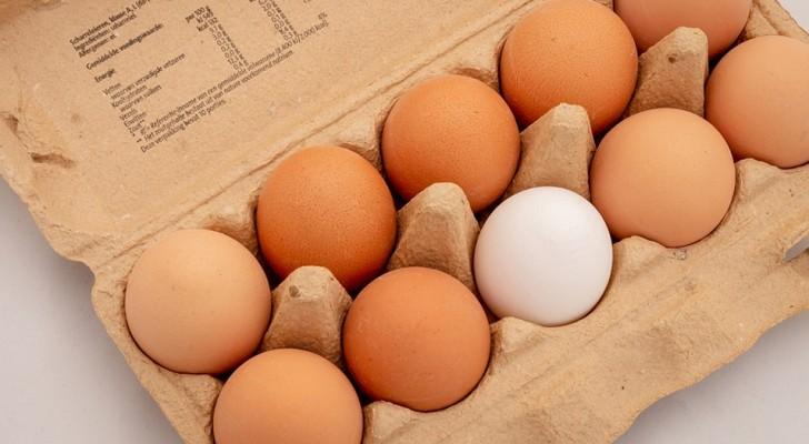 Le uova vanno tenute in frigorifero o no? Perché al supermercato si trovano a temperatura ambiente?