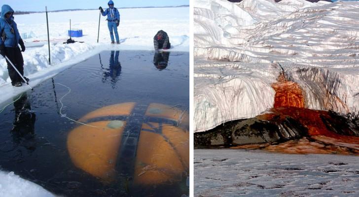 17 curiosités sur l'Antarctique que l'on a rarement lu dans les livres de géographie