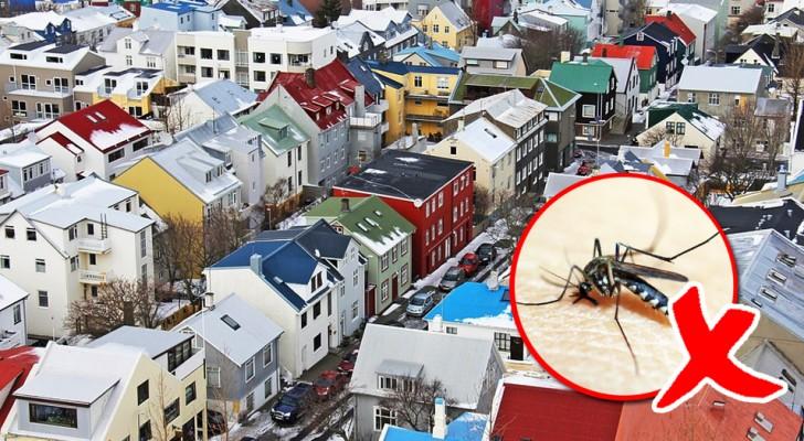 11 curiosités sur l'Islande qui vont vous faire tomber amoureux de ce pays