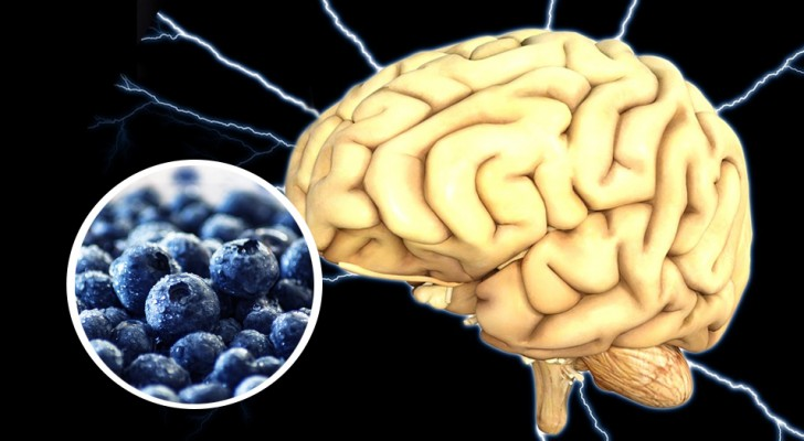 7 Lebensmittel, die ein reines Energiekonzentrat für unser Gehirn sind