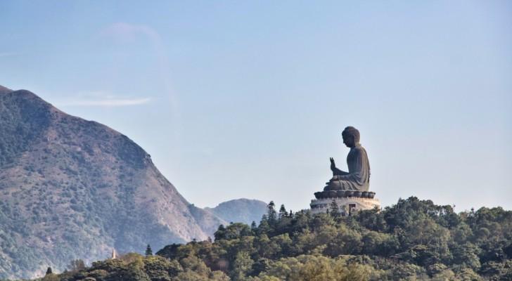 Quando você não souber o que fazer, não faça nada: uma história budista que nos ensina o valor da paciência