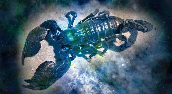 Voici les 16 raisons pour lesquelles le Scorpion est considéré comme le signe le plus puissant du zodiaque