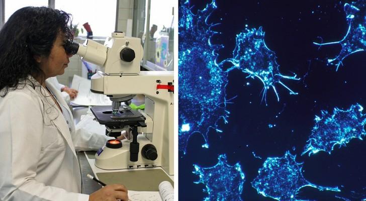 Nouveaux horizons dans la lutte contre le cancer : une femme est guérie par l'immunothérapie