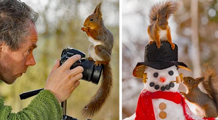Un fotografo segue gli scoiattoli ogni giorno per 6 anni: ecco alcuni tra i suoi scatti più belli